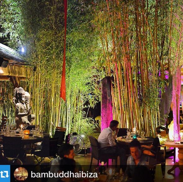 Bambuddha Ibiza